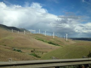 Wind turbines line the highway in Goldendale