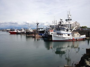 Cap Sante Commercial Fishing Boats