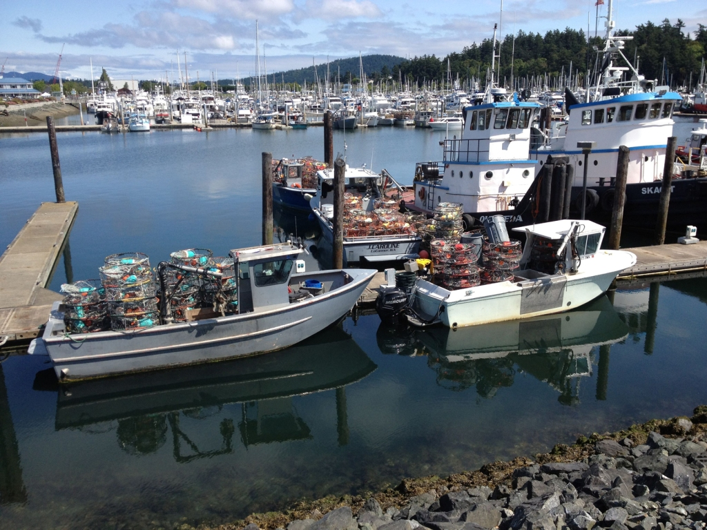 Commercial crab boats