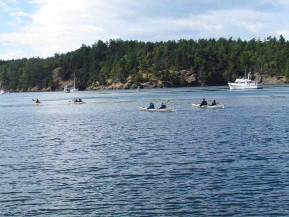 Kayaks in Reid Harbor