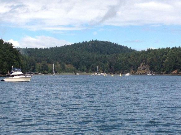 Reid Harbor in the morning