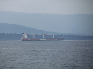 Container ship in Haro Strait