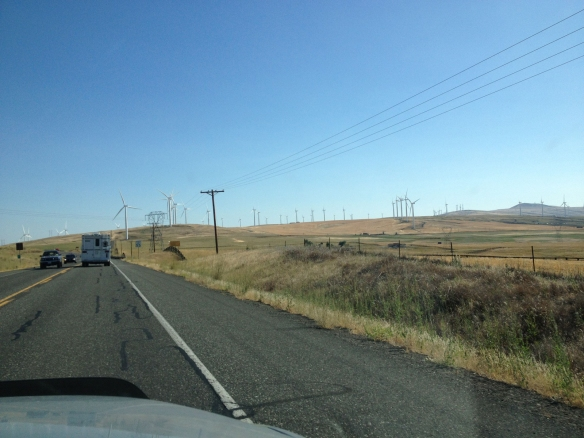 Wind turbines near Goldendale