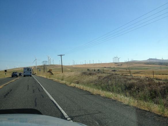 Wind turbines near Goldendale