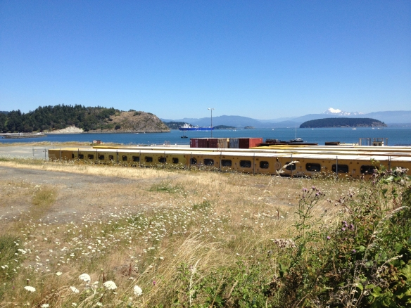 View of Cap Sante, Fidalgo Bay, and Mt. Baker