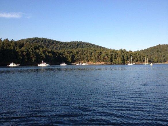 dock and mooring buoys at prevost harbor