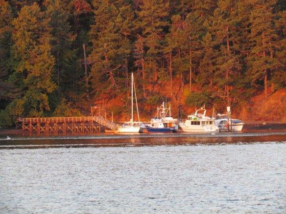 prevost dock at sunrise