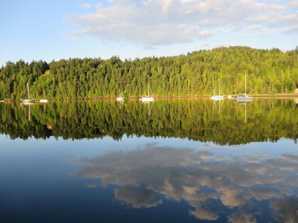 reflections at port browning