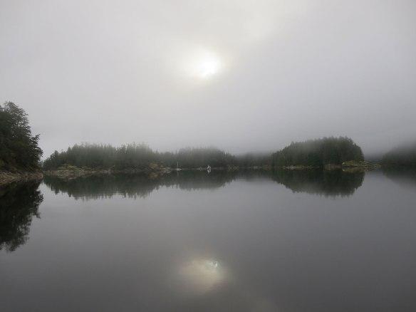 prideaux haven fog