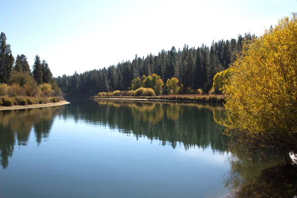 Deschutes River at Aspen Camp