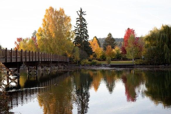Drake Park, Mirror Pond