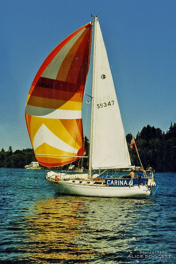 carina flying spinnaker