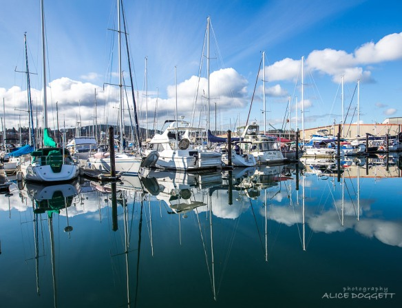 reflections-anacortes-marina