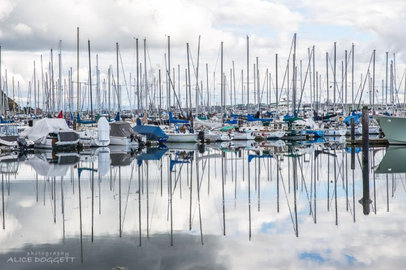 cap-sante-marina-reflections