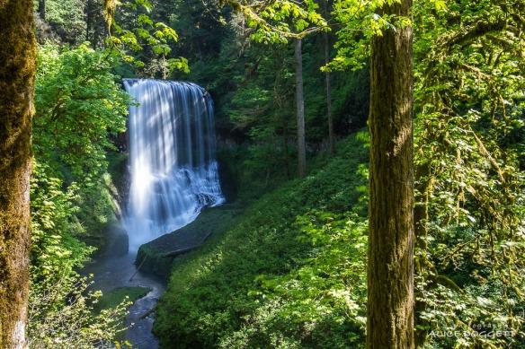 waterfall-silver-springs