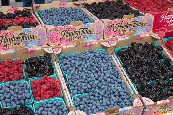 anacortes-market-berries