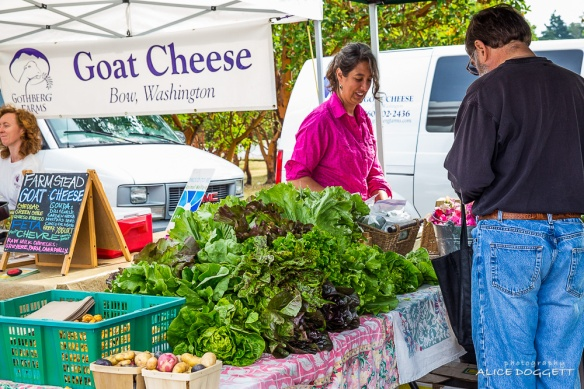 anacortes-market-cheese