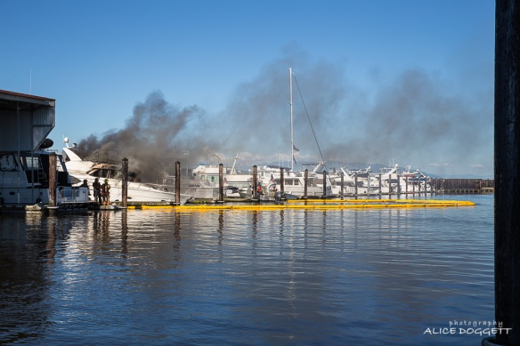 Deployed Oil Containment Boom Anacortes Boat Fire