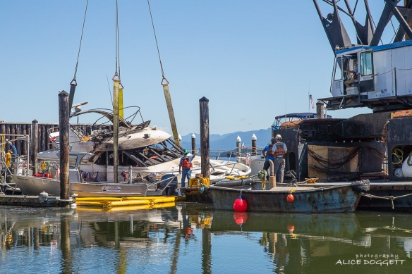 Crane Anacortes Boat Fire