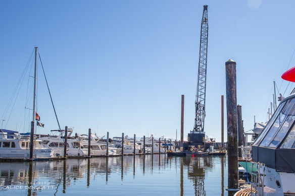 salvage crane anacortes marina boat fire