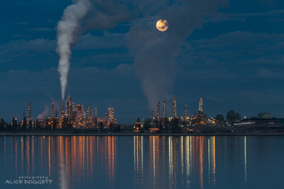 Full Moon Over Anacortes Refinery