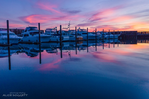 Anacortes Marina At Dawn