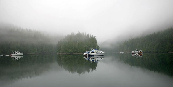 fog in waddington bay b.c.
