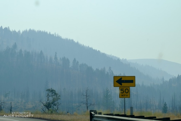 Lots of smoke at Satus Pass